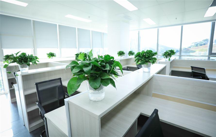 办公室(二)